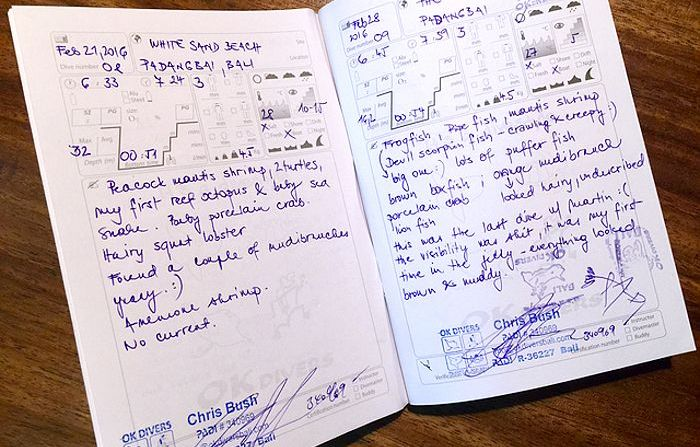 What is a diving logbook and why you should keep it ok divers - Dive log book ...