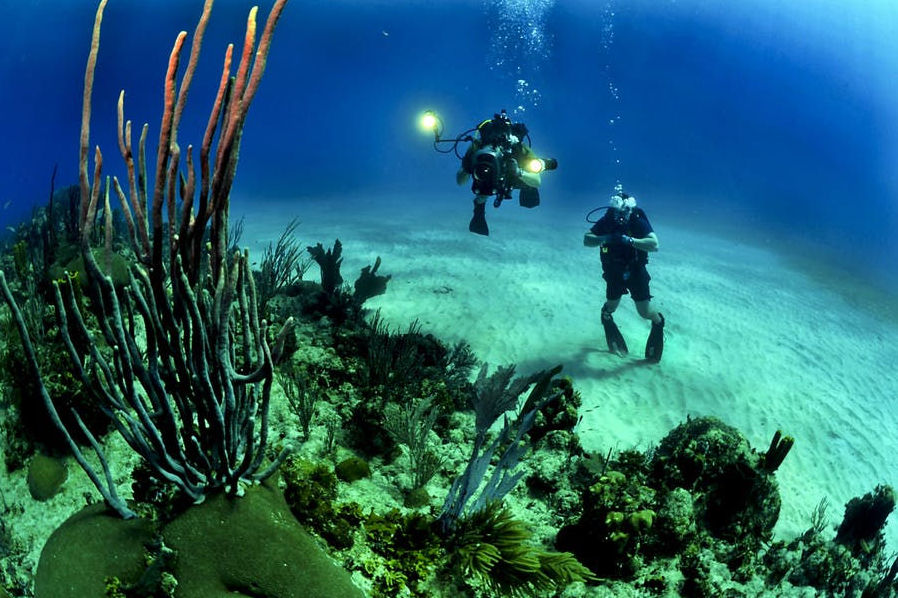 Scuba diver next to reef