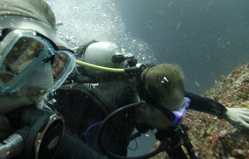 Current Diving in Bali