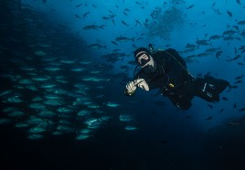Diving in Bali - Nusa Penida Blue Corner