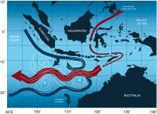 OK Divers Blog Indonesian through flow