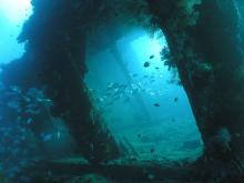 Bali Wreck Diving in Tulamben with OK Divers