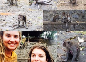 me with monkey in Bali