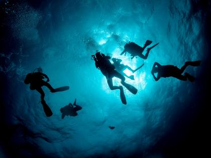 Diving in Bali - Gili Mimpang - Divers