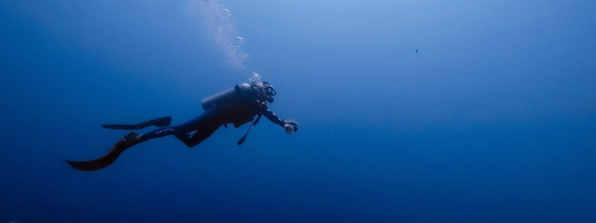 Scuba Diver under water in Bali